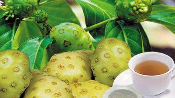 Beneficios y Propiedades del Jugo de Noni en Ayunas – Dolor de Huesos, Bajar de Peso, Colesterol