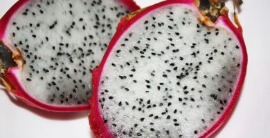 Beneficios de la Pitahaya